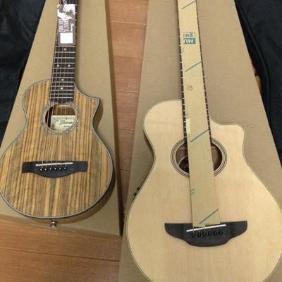 Amazonで一夜にしてミニギター2本購入の巻。