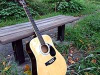 guitar005