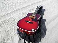 guitar008