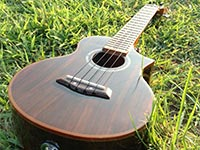 ukulele003