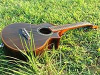 ukulele004