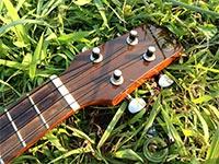 ukulele006