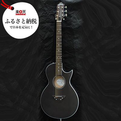 ふるさと納税ギター