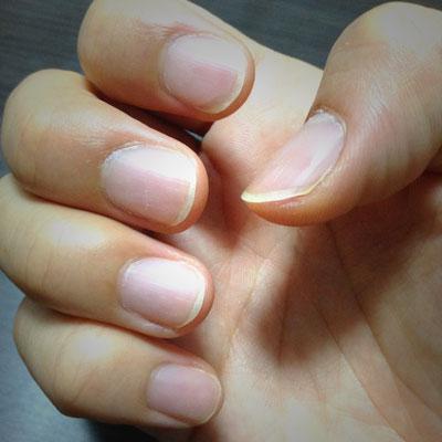 フィンガースタイルのギター・ウクレレ弾きにとって、爪は楽器です。