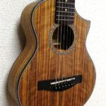 Ibanezのピッコロギターは初心者におすすめできるか?